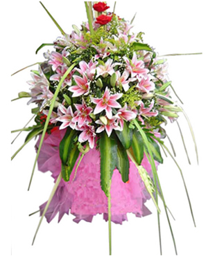 Business Flowers, Openning Ceremony Flowers And Gifts, Office/Shop Opening