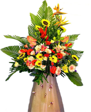 Delicieux Business Flowers, Openning Ceremony Flowers And Gifts, Office/Shop Opening