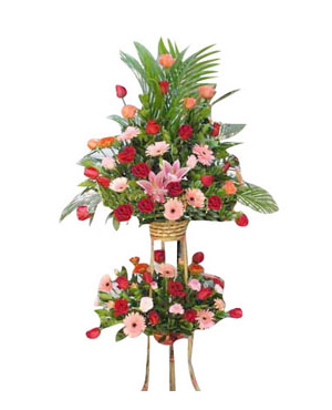 Business Flowers, Openning Ceremony Flowers And Gifts, Office/Shop Opening    Fuzhou Flowers Shop